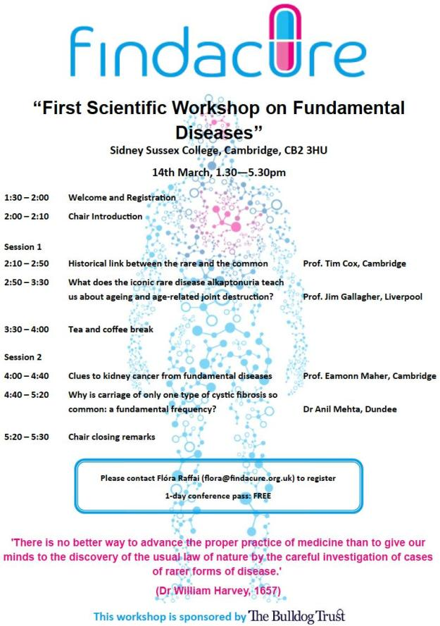 FindAcure workshop