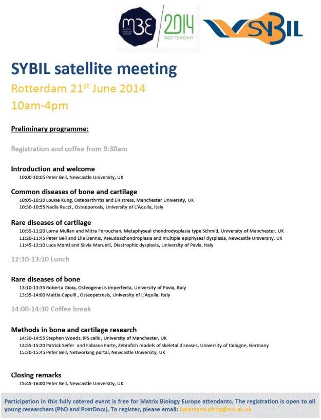 SYBIl satellite
