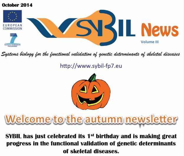 SYBIL autumn 2014