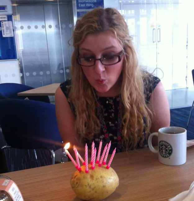 cake 2 2015